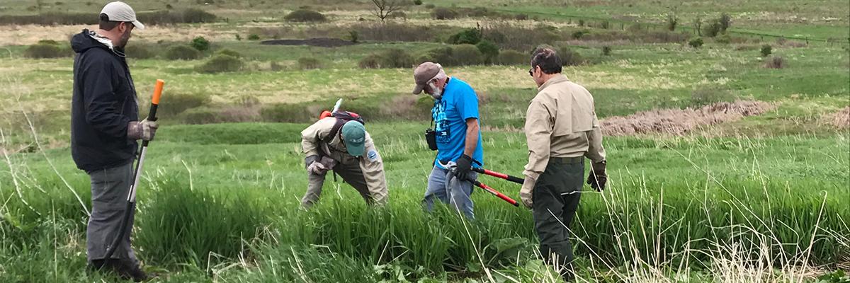 Volunteers working on trail