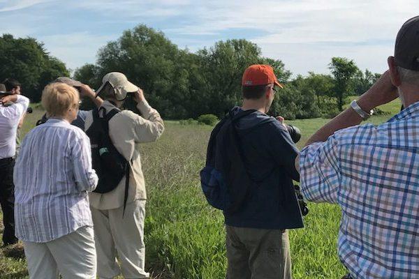 Group of bird watchers