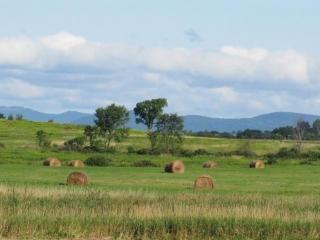 Washinton County Grasslands