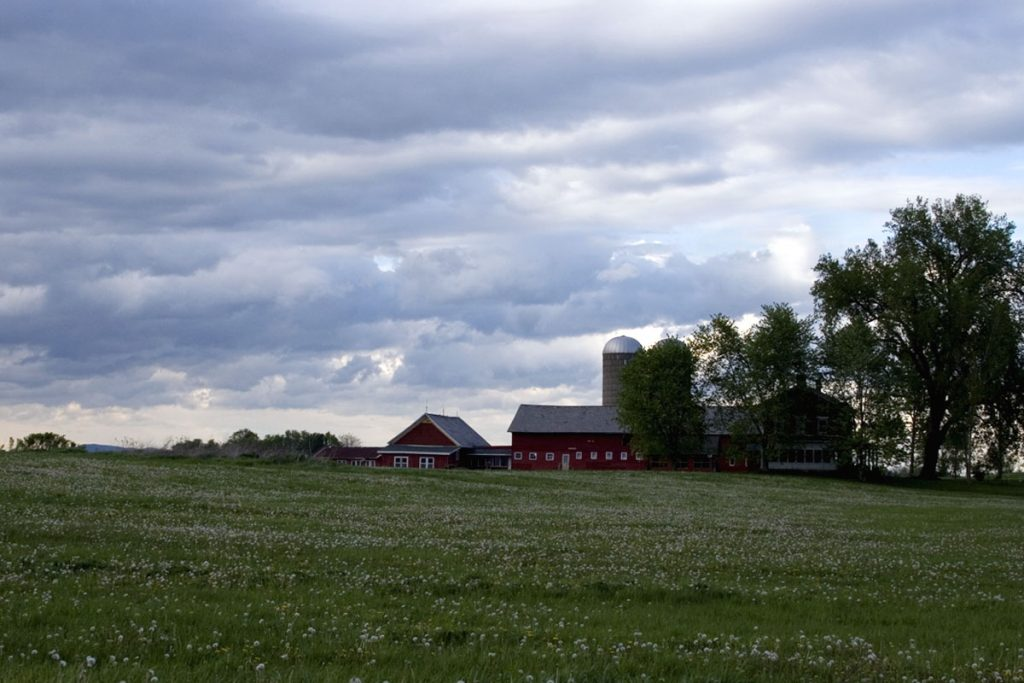 Barn and silos in field