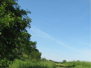 Washington County Grassland Wildlife Management Area Trail