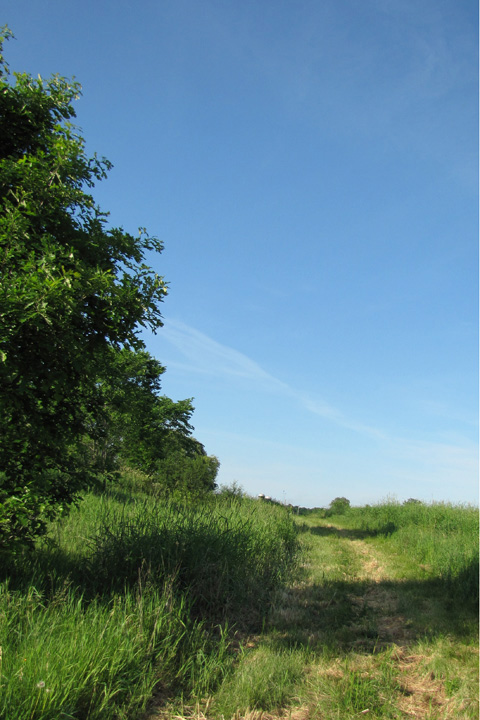 Washington County Grassland Wildlife Management Area Trail