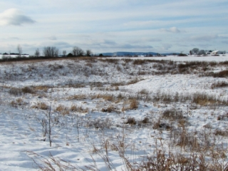 Washinton County Grasslands in Winter
