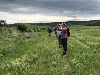 Viewing birds in grasslands bird area